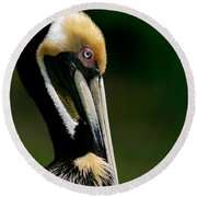 Brown Pelican Profile Round Beach Towel