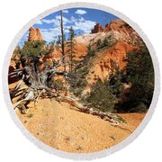 Bryce Canyon Forest Round Beach Towel