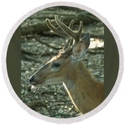 Buck 9246 4037 2 Round Beach Towel