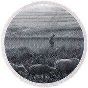 Buffalo And Monsoon Rain Round Beach Towel by Anonymous