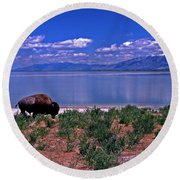 Buffalo And The Great Salt Lake Round Beach Towel