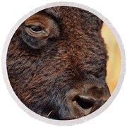 Buffalo Up Close Round Beach Towel