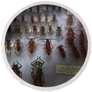Bug Collector - So What's Bugging You Round Beach Towel by Mike Savad
