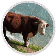 Bull On The Edge Round Beach Towel
