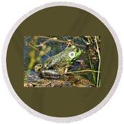 Bullfrog 1 Round Beach Towel