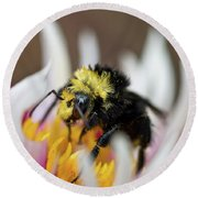 Bumblebee Attacking Flower Round Beach Towel