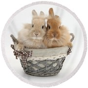 Bunnies A Basket Round Beach Towel
