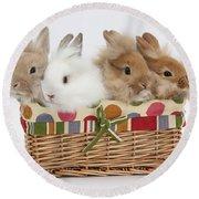 Bunnies In A Basket Round Beach Towel