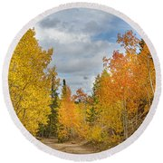 Burning Orange And Gold Autumn Aspens Back Country Colorado Road Round Beach Towel