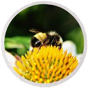 Busy Bee Collecting On Echinacea Pow Wow Round Beach Towel