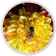 Busy Bee On Yellow Flower Round Beach Towel