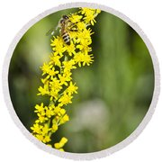 Busy Bee On Yellow Wildflower Round Beach Towel