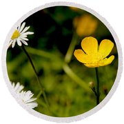 Buttercup In Riverside Park Round Beach Towel
