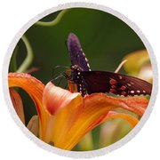 Butterflies Are Free... Round Beach Towel