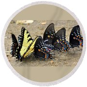 Butterflies By The Buches Round Beach Towel