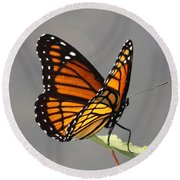 Butterfly - Sitting On The Green Round Beach Towel