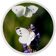 Butterfly - Visiting Round Beach Towel