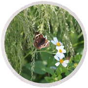 Butterfly 13 Round Beach Towel