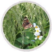 Butterfly 14 Round Beach Towel