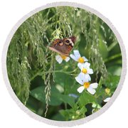 Butterfly 15 Round Beach Towel