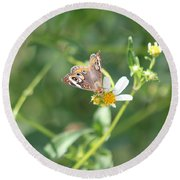 Butterfly 21 Round Beach Towel