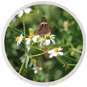 Butterfly 24 Round Beach Towel