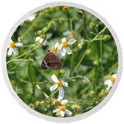 Butterfly 28 Round Beach Towel