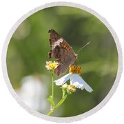 Butterfly 3 Round Beach Towel