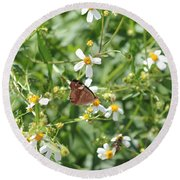 Butterfly 32 Round Beach Towel