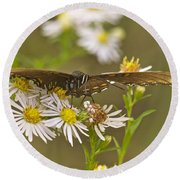 Butterfly 3319 Round Beach Towel