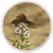 Butterfly 3322 Round Beach Towel