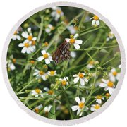 Butterfly 35 Round Beach Towel