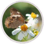 Butterfly 39 Round Beach Towel