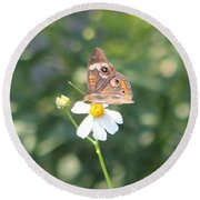 Butterfly 42 Round Beach Towel