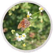 Butterfly 46 Round Beach Towel