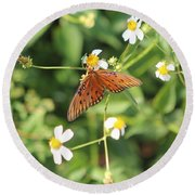 Butterfly 48 Round Beach Towel