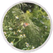 Butterfly 50 Round Beach Towel