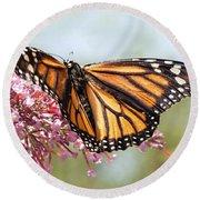 Butterfly Beauty - Monarch IIi Round Beach Towel