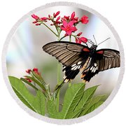 Butterfly Candy Round Beach Towel