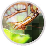 Butterfly Frosted Glass Round Beach Towel