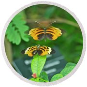 Butterfly Lovers Round Beach Towel