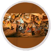 Butterfly Menagerie Round Beach Towel