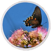 Butterfly On Mimosa Blossom Round Beach Towel