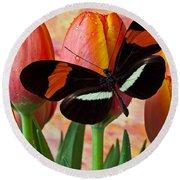 Butterfly On Orange Tulip Round Beach Towel