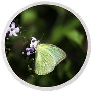 Butterfly On Purple Flower Round Beach Towel
