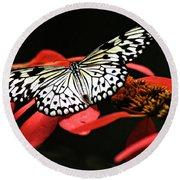 Butterfly On Red Round Beach Towel