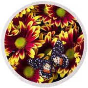 Butterfly On Yellow Red Daises  Round Beach Towel
