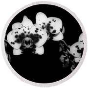 Butterfly Orchid In The Shadows Round Beach Towel