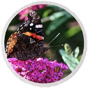 Butterfly Plant At Work Round Beach Towel