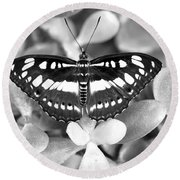 Butterfly Study #0061 Round Beach Towel